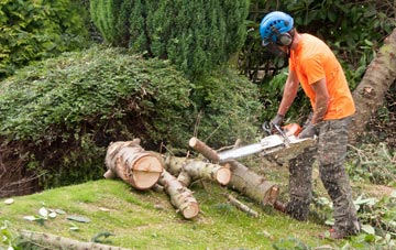 additional services offered by Bessbrook tree surgeons