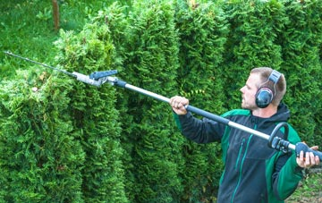 Bessbrook hedge trimming costs