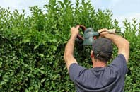 free Bessbrook hedge trimming quotes
